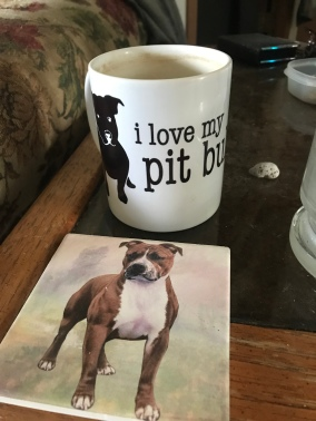 Mom got me a Pitty coaster that matches my mug!